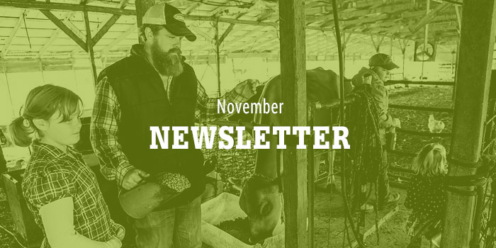 Lilly Den Farm November Newsletter