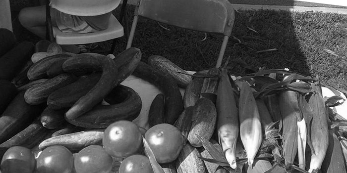 Table with corn, tomatoes, and cucumbers for sale