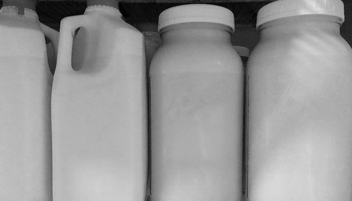 Sustainably raised raw milk at Lilly Den Farm