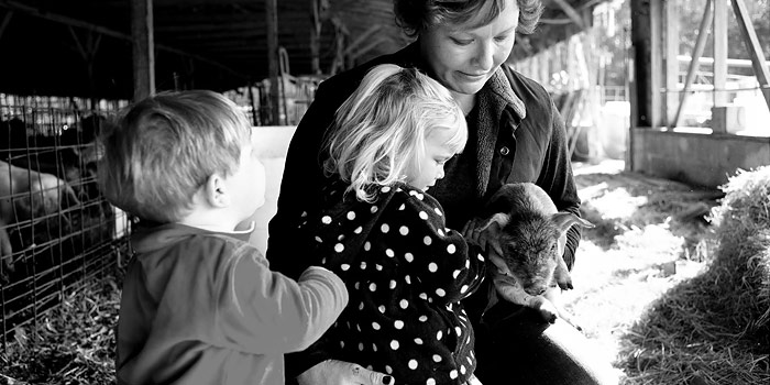 Mackenzie, Meadow, and Rye playing with a piglet