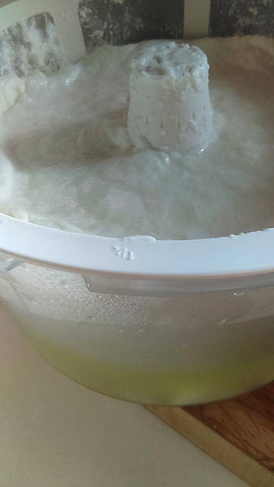 Homemade yogurt and whey after heating to 100˚ for ten hours