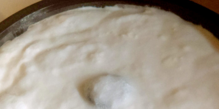 Homemade Creamy Yogurt
