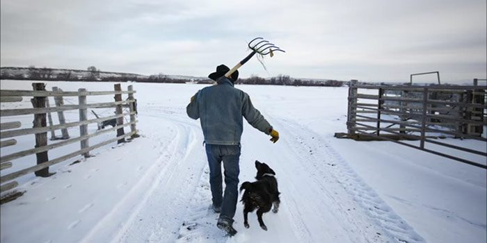 Farmer And His Dog Walking In The Snow
