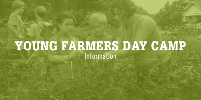 Young Farmer Day Camp