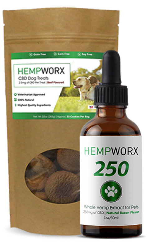 Pet HempWorx CBD Oil bottle with dropper and treats