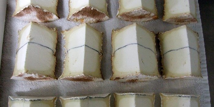 Cut Blocks Of Blue Cheese
