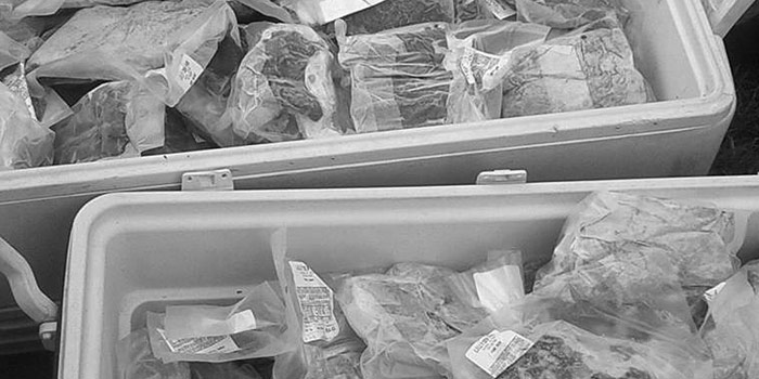 Coolers containing packaged meat from Lilly Den Farm