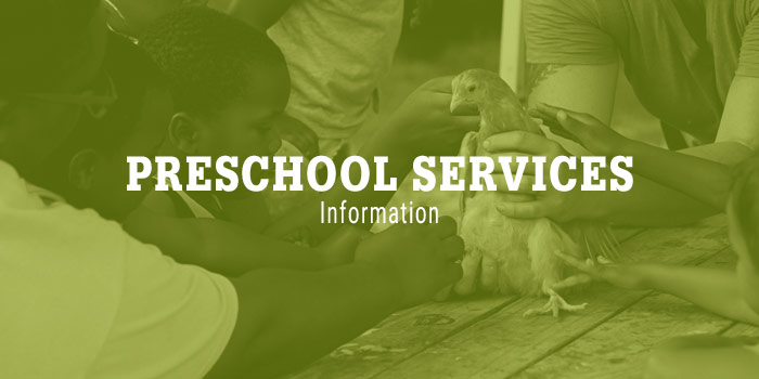 Preschool Services Graphic With White Serif Type Laying Over Green-toned Image Of Children Petting A Bird